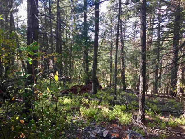 903 Sugar Pine Dr, Cloudcroft, NM 88317 (MLS #157442) :: Assist-2-Sell Buyers and Sellers Preferred Realty