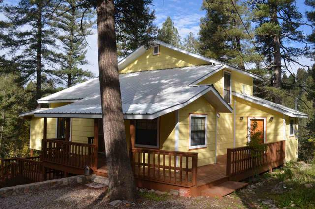 201 Spring St, Cloudcroft, NM 88317 (MLS #157453) :: Assist-2-Sell Buyers and Sellers Preferred Realty