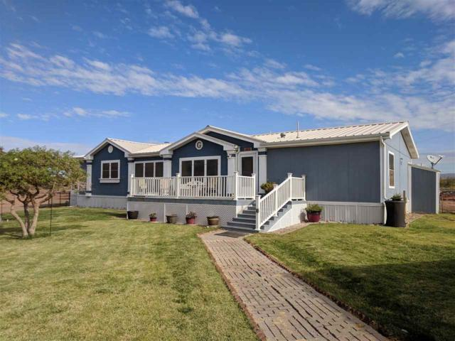 623 Riata Rd, Tularosa, NM 88352 (MLS #157543) :: Assist-2-Sell Buyers and Sellers Preferred Realty