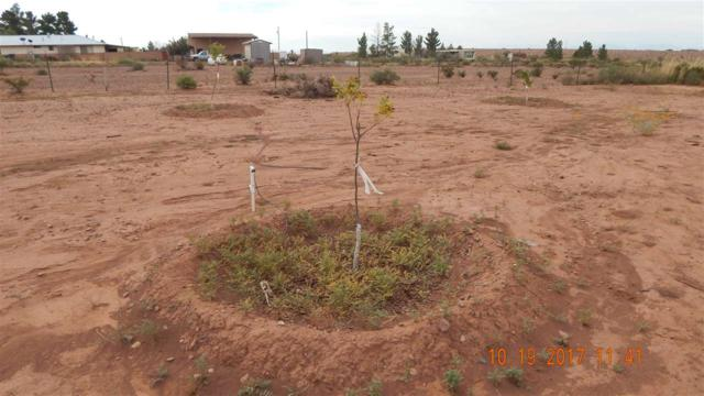 6 Holiday Ln, La Luz, NM 88337 (MLS #157586) :: Assist-2-Sell Buyers and Sellers Preferred Realty