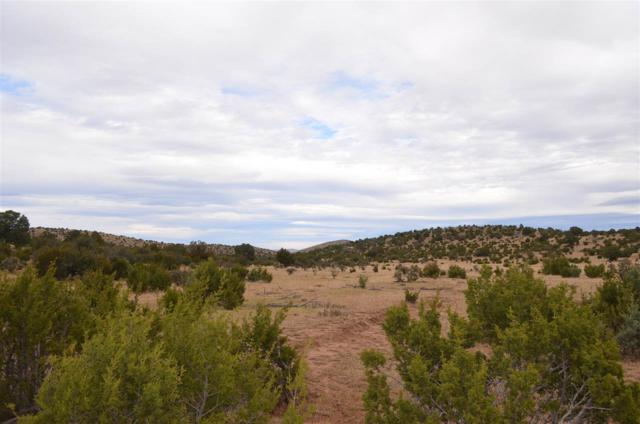 Weber Young Rd, Pinon, NM 88344 (MLS #157587) :: Assist-2-Sell Buyers and Sellers Preferred Realty