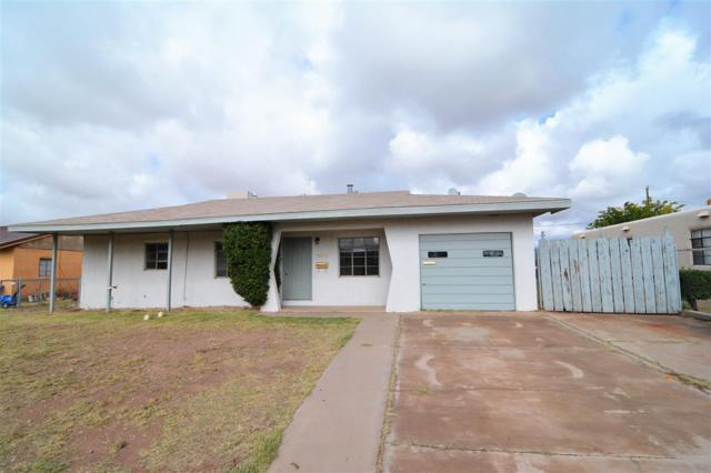 923 Peach Cir, Tularosa, NM 88352 (MLS #157590) :: Assist-2-Sell Buyers and Sellers Preferred Realty