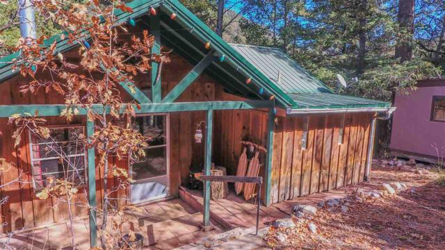 7 Ponemah Dr, High Rolls Mountain Park, NM 88325 (MLS #157609) :: Assist-2-Sell Buyers and Sellers Preferred Realty