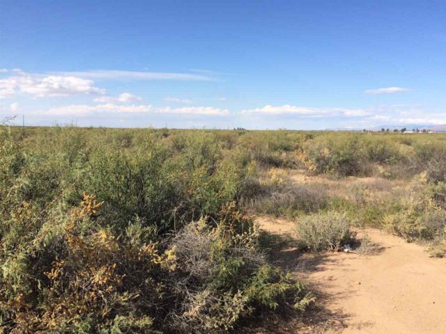 21 Dog Canyon Rd, Alamogordo, NM 88310 (MLS #157653) :: Assist-2-Sell Buyers and Sellers Preferred Realty