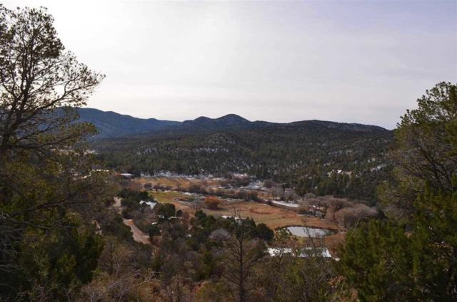 Lts 13, 20-21 Karr Canyon Rd, High Rolls Mountain Park, NM 88325 (MLS #157700) :: Assist-2-Sell Buyers and Sellers Preferred Realty
