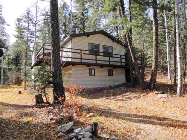 711 Squirrel Ave #3, Cloudcroft, NM 88317 (MLS #157711) :: Assist-2-Sell Buyers and Sellers Preferred Realty