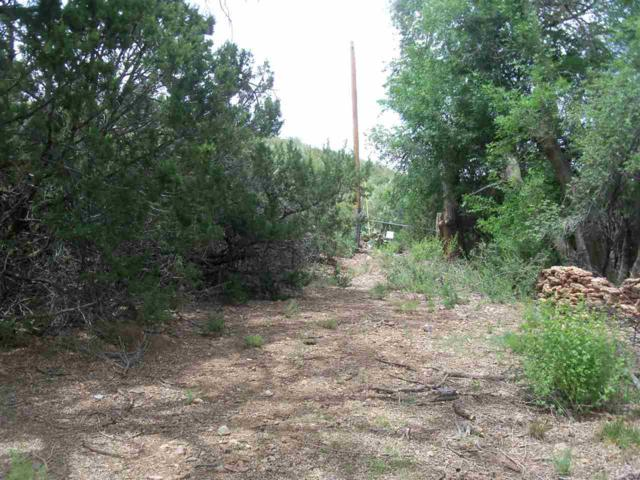 Address Not Published, La Luz, NM 88337 (MLS #157716) :: Assist-2-Sell Buyers and Sellers Preferred Realty