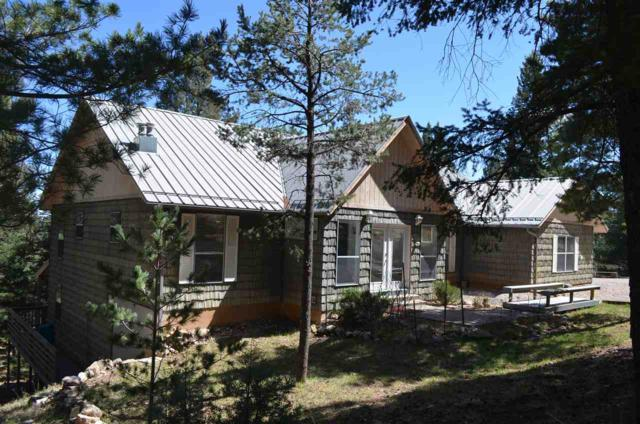53 Aspen #2, Mayhill, NM 88339 (MLS #157754) :: Assist-2-Sell Buyers and Sellers Preferred Realty