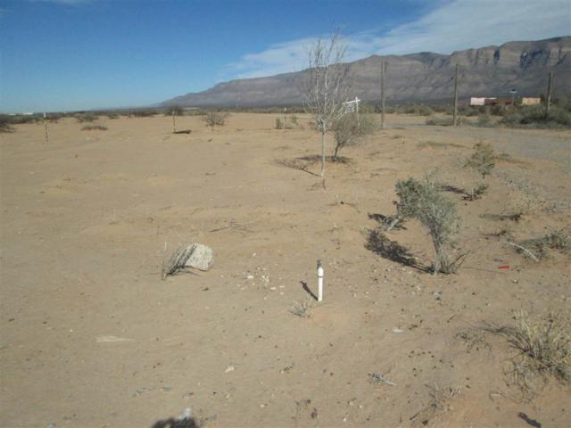 102 San Don Rd, Alamogordo, NM 88310 (MLS #157838) :: Assist-2-Sell Buyers and Sellers Preferred Realty