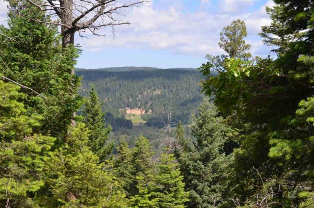 Lt 45 + Capricorn Point, Cloudcroft, NM 88317 (MLS #157895) :: Assist-2-Sell Buyers and Sellers Preferred Realty
