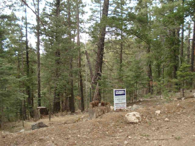 Lot 8 & 9 Silver Cloud Dr, Cloudcroft, NM 88317 (MLS #157997) :: Assist-2-Sell Buyers and Sellers Preferred Realty