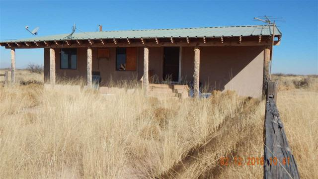 319 Tulie Gate Rd, Tularosa, NM 88352 (MLS #158057) :: Assist-2-Sell Buyers and Sellers Preferred Realty
