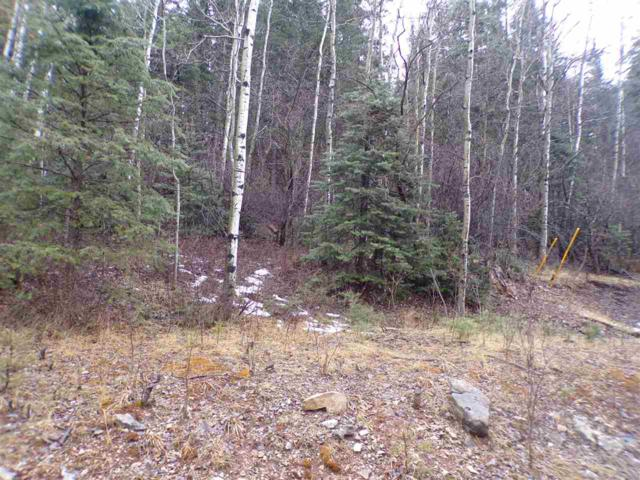 1214 Blanca Vista, Cloudcroft, NM 88317 (MLS #158089) :: Assist-2-Sell Buyers and Sellers Preferred Realty