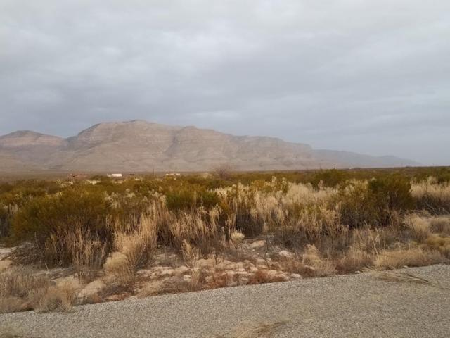 Lot 11 Pasa Por Aqui, Alamogordo, NM 88310 (MLS #158139) :: Assist-2-Sell Buyers and Sellers Preferred Realty