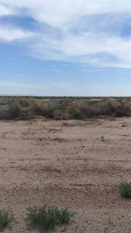 Address Not Published, Alamogordo, NM 88310 (MLS #158150) :: Assist-2-Sell Buyers and Sellers Preferred Realty