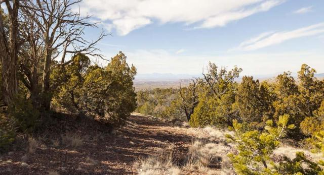 22 Red Rock Rd, High Rolls Mountain Park, NM 88325 (MLS #158189) :: Assist-2-Sell Buyers and Sellers Preferred Realty