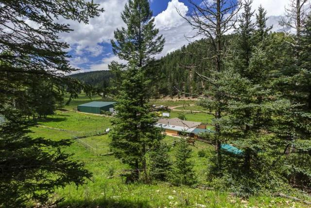 68 Pierce Canyon Rd, Cloudcroft, NM 88317 (MLS #158192) :: Assist-2-Sell Buyers and Sellers Preferred Realty