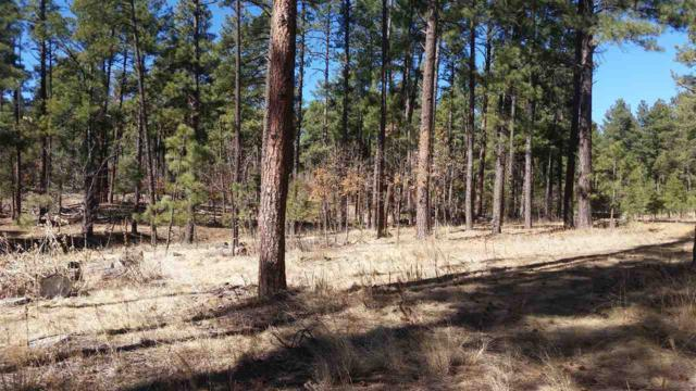 Lot 8 Homestead Rd, Ruidoso, NM 88345 (MLS #158197) :: Assist-2-Sell Buyers and Sellers Preferred Realty