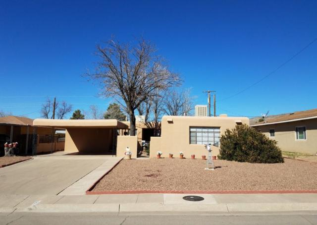 1801 Snow Dr, Alamogordo, NM 88310 (MLS #158201) :: Assist-2-Sell Buyers and Sellers Preferred Realty