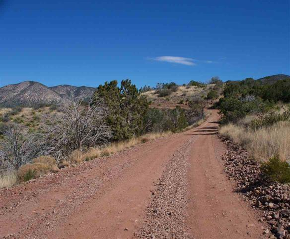 8 Deer Tracks Rd, La Luz, NM 88337 (MLS #158237) :: Assist-2-Sell Buyers and Sellers Preferred Realty