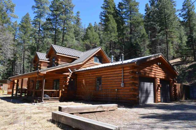 63 Sullivan Canyon Rd, Cloudcroft, NM 88317 (MLS #158248) :: Assist-2-Sell Buyers and Sellers Preferred Realty