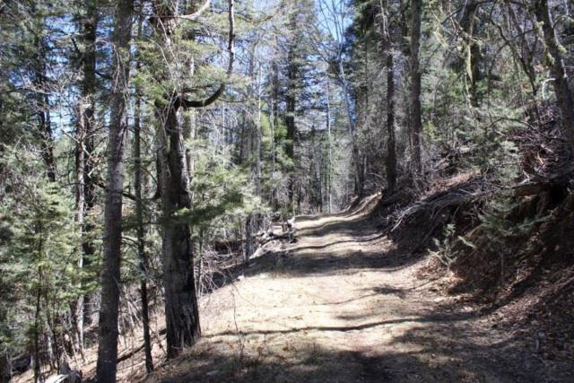 Lot 30 Valley Dr, Cloudcroft, NM 88317 (MLS #158268) :: Assist-2-Sell Buyers and Sellers Preferred Realty