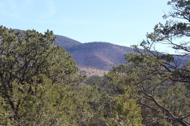 Lot 273 Coleridge Dr #14, Timberon, NM 88350 (MLS #158269) :: Assist-2-Sell Buyers and Sellers Preferred Realty