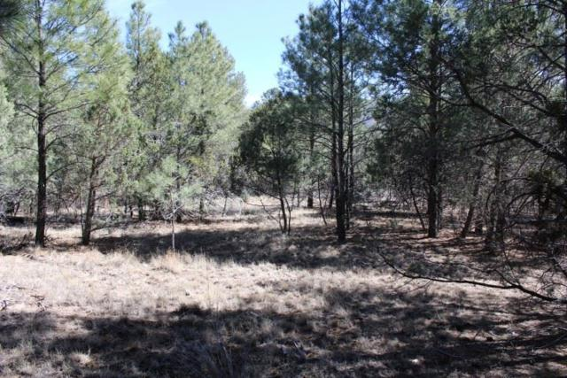 Lot 15 Sacramento River Rd Sre, Timberon, NM 88350 (MLS #158270) :: Assist-2-Sell Buyers and Sellers Preferred Realty