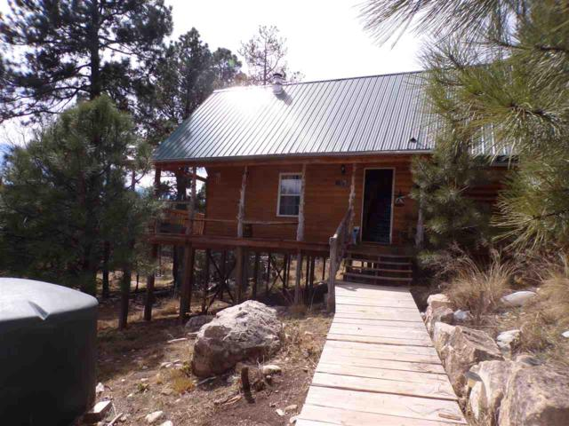 617 16 Springs Canyon Rd, Cloudcroft, NM 88317 (MLS #158272) :: Assist-2-Sell Buyers and Sellers Preferred Realty