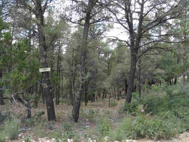 Camino Alto, High Rolls Mountain Park, NM 88325 (MLS #158334) :: Assist-2-Sell Buyers and Sellers Preferred Realty