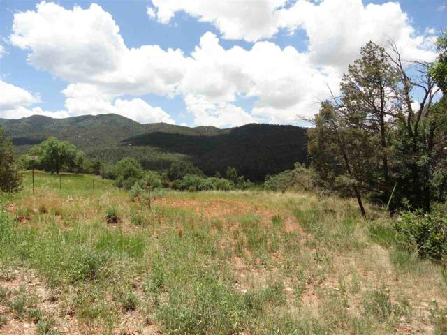 Camino Alto, High Rolls Mountain Park, NM 88325 (MLS #158335) :: Assist-2-Sell Buyers and Sellers Preferred Realty
