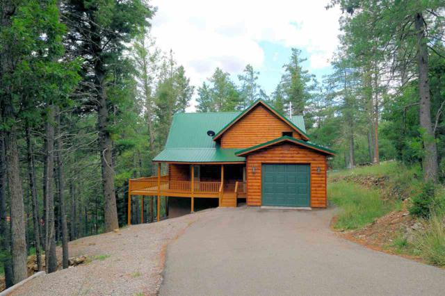 39 Honey Bear, Mayhill, NM 88339 (MLS #158353) :: Assist-2-Sell Buyers and Sellers Preferred Realty
