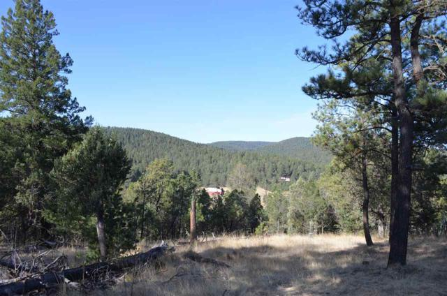 Lot 1 Iron Gate Dr, Mayhill, NM 88339 (MLS #158410) :: Assist-2-Sell Buyers and Sellers Preferred Realty