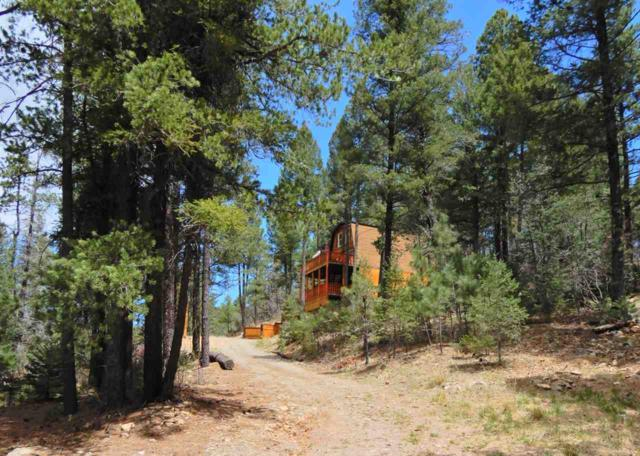 15 Henwood Dr, High Rolls Mountain Park, NM 88325 (MLS #158443) :: Assist-2-Sell Buyers and Sellers Preferred Realty