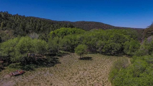 18 Orchard Loop, High Rolls Mountain Park, NM 88325 (MLS #158532) :: Assist-2-Sell Buyers and Sellers Preferred Realty