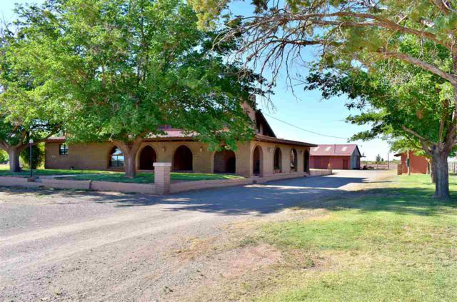15 Roy Tucker Ln, Tularosa, NM 88352 (MLS #158594) :: Assist-2-Sell Buyers and Sellers Preferred Realty