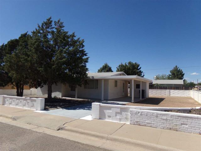 1113 Greenwood Ln, Alamogordo, NM 88310 (MLS #158598) :: Assist-2-Sell Buyers and Sellers Preferred Realty
