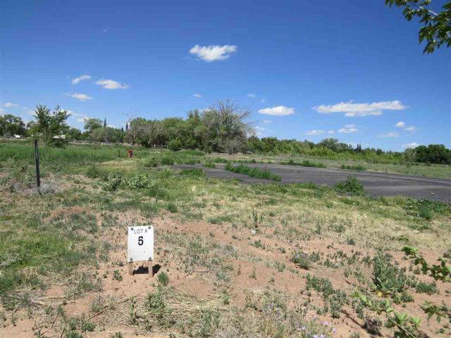 Lot 5 Marin Dr, Tularosa, NM 88352 (MLS #158603) :: Assist-2-Sell Buyers and Sellers Preferred Realty