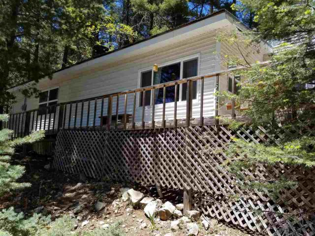602 Panther Ave, Cloudcroft, NM 88317 (MLS #158611) :: Assist-2-Sell Buyers and Sellers Preferred Realty