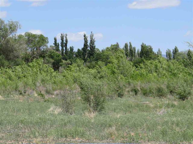 Lot 8 Marin Dr, Tularosa, NM 88352 (MLS #158614) :: Assist-2-Sell Buyers and Sellers Preferred Realty