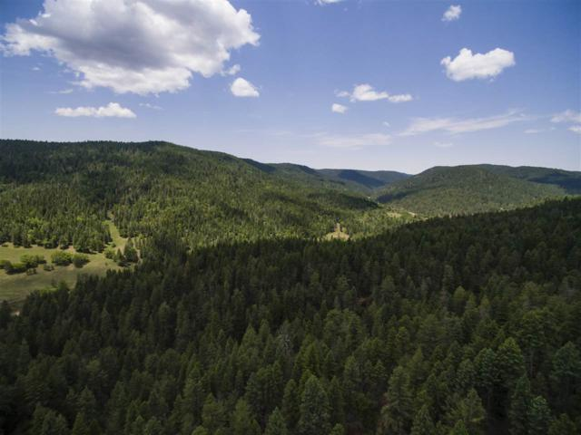 835 Cox Canyon Hwy, Cloudcroft, NM 88317 (MLS #158616) :: Assist-2-Sell Buyers and Sellers Preferred Realty