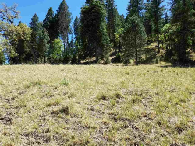124 Trading Post Rd, Cloudcroft, NM 88317 (MLS #158622) :: Assist-2-Sell Buyers and Sellers Preferred Realty
