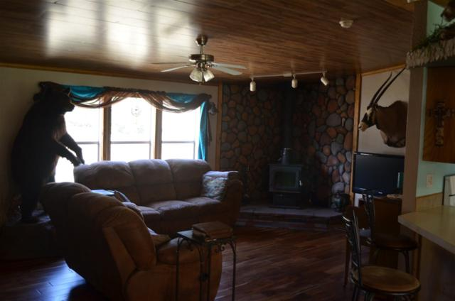 68 Pierce Canyon Rd, Cloudcroft, NM 88317 (MLS #158638) :: Assist-2-Sell Buyers and Sellers Preferred Realty