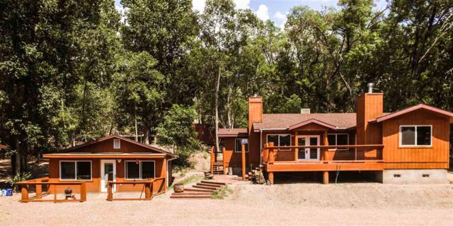 76 Nogal Canyon Rd, Bent, NM 88314 (MLS #158668) :: Assist-2-Sell Buyers and Sellers Preferred Realty