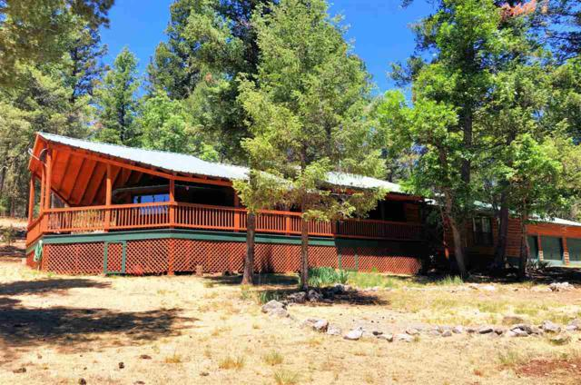 4 Woodchuck #1, Mayhill, NM 88339 (MLS #158675) :: Assist-2-Sell Buyers and Sellers Preferred Realty