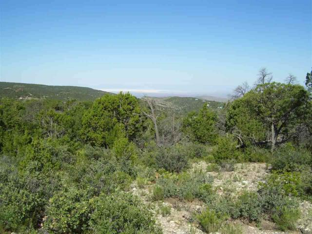 Hide-A-Way Trl, High Rolls Mountain Park, NM 88325 (MLS #158730) :: Assist-2-Sell Buyers and Sellers Preferred Realty