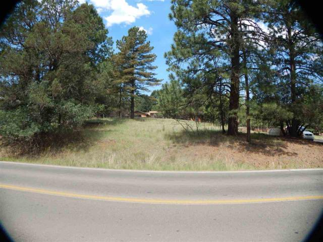 609 Wingfield, Ruidoso, NM 88345 (MLS #158752) :: Assist-2-Sell Buyers and Sellers Preferred Realty