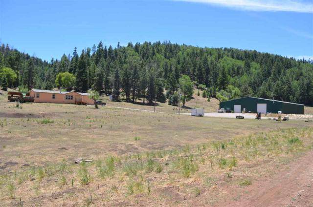 70 Pierce Canyon Rd, Cloudcroft, NM 88317 (MLS #158772) :: Assist-2-Sell Buyers and Sellers Preferred Realty