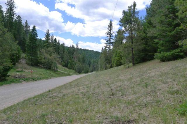 131 Young Canyon Rd, Cloudcroft, NM 88317 (MLS #158799) :: Assist-2-Sell Buyers and Sellers Preferred Realty