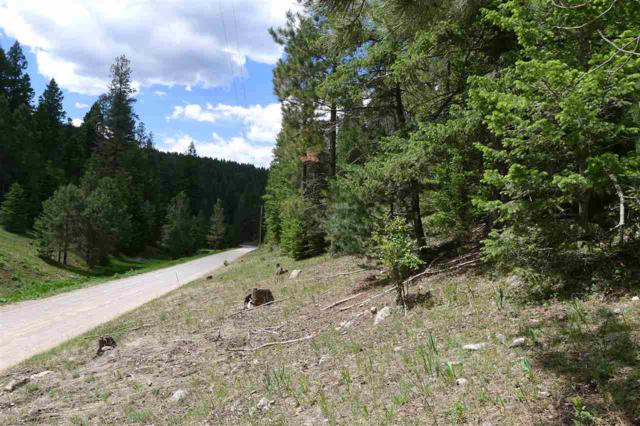 125 Young Canyon Rd, Cloudcroft, NM 88317 (MLS #158800) :: Assist-2-Sell Buyers and Sellers Preferred Realty